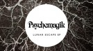 Psychemagik – Above The Clouds